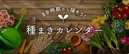 種まきカレンダー